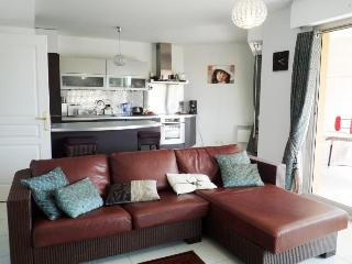 Roi Albert 2 Bedroom Flat with Large Terrace and Pool, in Cannes - Cannes vacation rentals