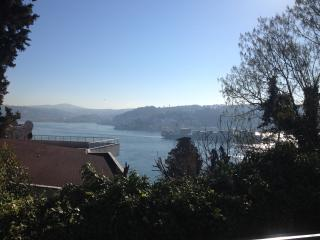 GREAT VIEW & APARTMENT! - Istanbul vacation rentals