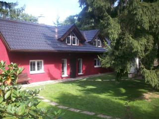 3 bedroom Guest house with Internet Access in Ricany - Ricany vacation rentals