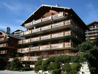 Cozy 3 bedroom Nendaz Apartment with Internet Access - Nendaz vacation rentals