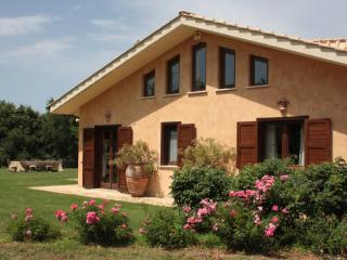 Nice House with Internet Access and A/C - Sacrofano vacation rentals