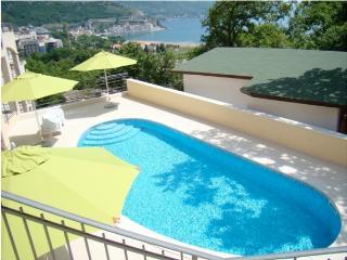 Apartment in Becici Montenegro - Becici vacation rentals