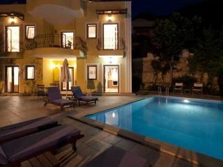 Saffron Villa - Spacious Villa with Private Pool - Kalkan vacation rentals