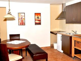 Comfortable Condo with Internet Access and Satellite Or Cable TV - Brezice vacation rentals