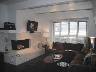 Luxury Living in Downtown Aspen 120 yds to Gondola - Aspen vacation rentals