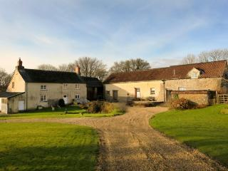 Perfect 2 bedroom Barn in Buckland Brewer - Buckland Brewer vacation rentals