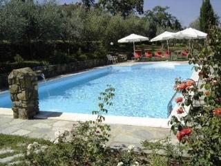 Villa Benvenuti, 30 acres, private pool, WIFI! - Pergine Valdarno vacation rentals