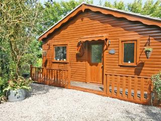 Bright 1 bedroom Thurso Cabin with Deck - Thurso vacation rentals