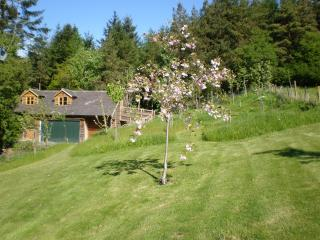 The Barn at Lower Beach - Bishops Castle vacation rentals