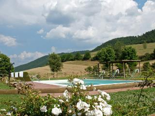 Umbria villa (BFY13579) - Acquapendente vacation rentals