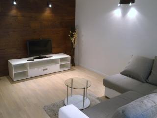 TV, SAT, Free WiFi 2+2 (S1) - Dramalj vacation rentals