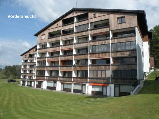 Nice Condo with Internet Access and Wireless Internet - Liezen vacation rentals