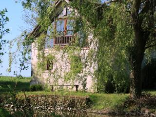Bright 1 bedroom Cottage in Châtillon-sur-Indre - Châtillon-sur-Indre vacation rentals
