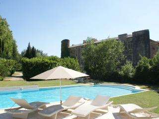 20 km AvignonAppt dans chateau - Avignon vacation rentals