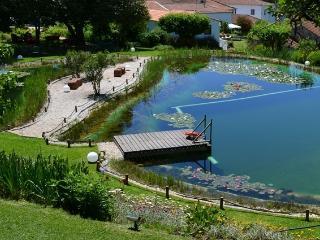 Quinta da Fontoura - Aveiro vacation rentals