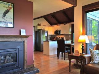 Cozy Home with Beautiful Views, Ski in/Out! - Wintergreen vacation rentals