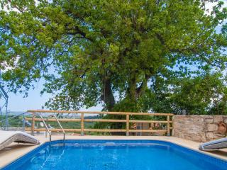 Pomogna, a luxury cottage with salted pool - Tsivaras vacation rentals