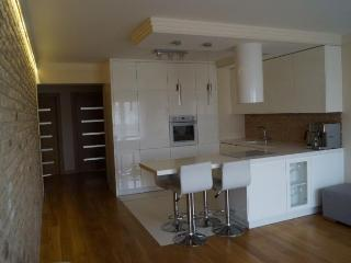 Romantic 1 bedroom Brno Apartment with Internet Access - Brno vacation rentals