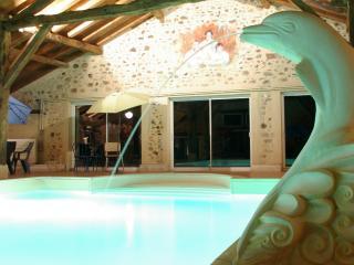 Activités sur 100 hectares, 2 gîtes, 28 personnes - Confolens vacation rentals