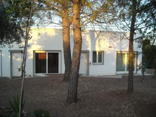 Nice 1 bedroom Ginosa House with Internet Access - Ginosa vacation rentals