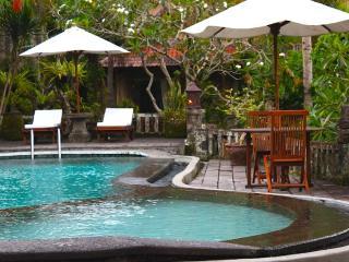 Ubud Villa Resort by the ravine - Ubud vacation rentals