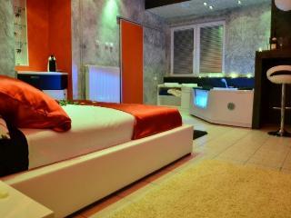 Blue House apartments Zlatibor - Zlatibor vacation rentals