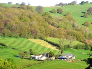 White House, Porth-y-Parc, in the Brecon Beacons - Abergavenny vacation rentals