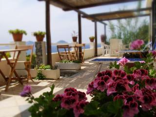 Punta Vardella - Ponza vacation rentals