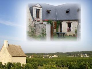 Nice Cottage with Internet Access and A/C - Bourgueil vacation rentals