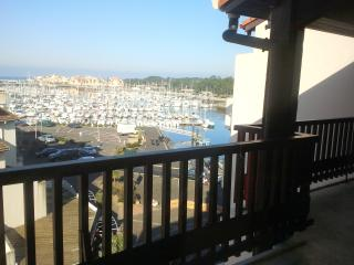 Nice Condo with A/C and Television - Capbreton vacation rentals