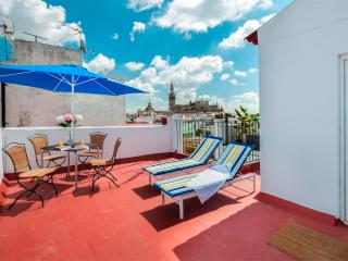 Antonia Díaz Apartment. Luxury in one of the best places of the centre of Seville - Seville vacation rentals