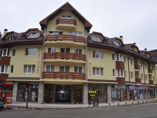 Studio Royal Plaza 303 - Borovets vacation rentals