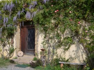 Cozy 1 bedroom Vacation Rental in Lannemezan - Lannemezan vacation rentals