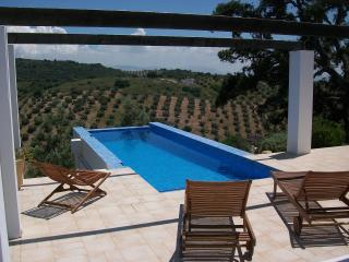Perfect Finca with Television and DVD Player - Fuentes de Cesna vacation rentals