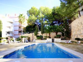 Wonderful first line apartment in Santa Ponsa - Santa Ponsa vacation rentals