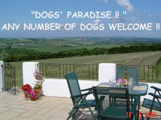 DOGS PARADISE -SWALLOW COTTAGE - Bideford vacation rentals