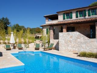 Beautiful Villa with Internet Access and Dishwasher - Sveti Lovrec vacation rentals