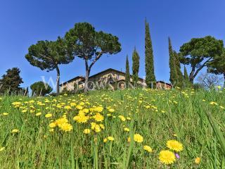1300 - Castelnuovo Berardenga vacation rentals