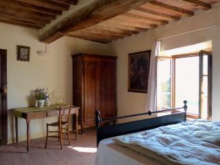 Casa Museo Gualerci Nicola Sasso Pisano - Sasso Pisano vacation rentals