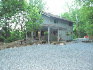 Pet friendly, Peaceful Cabin,Easy access to HWY - Staunton vacation rentals