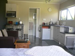 Cozy Hamilton Studio rental with Internet Access - Hamilton vacation rentals