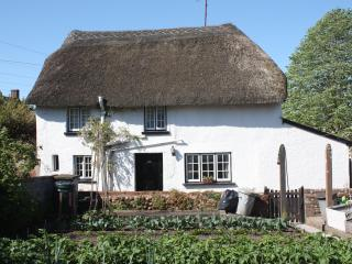 Thatched Cottage in Woodbury near Topsham - Exeter vacation rentals