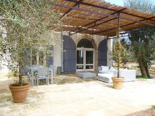 VILLA WITH OLIVE GROVE IN SALENTO NEAR CASTRO - Diso vacation rentals