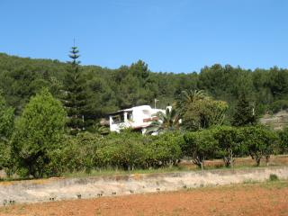 Small house with large pool - San Lorenzo vacation rentals