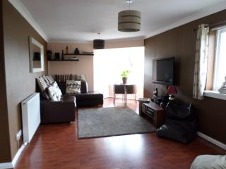 Bright 2 bedroom Apartment in Glasgow - Glasgow vacation rentals