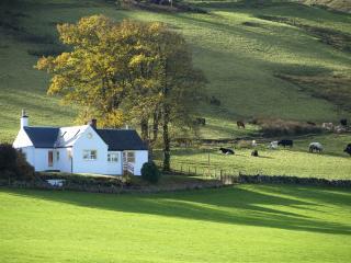 Genoch cottage: the Garden Flat - Straiton vacation rentals