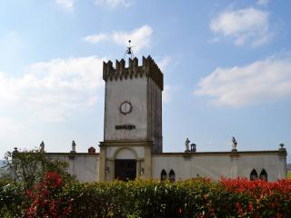 Charming tower of the 18th century - Cerreto Guidi vacation rentals