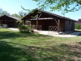 Nice Gite with Internet Access and Shared Outdoor Pool - Barbaste vacation rentals