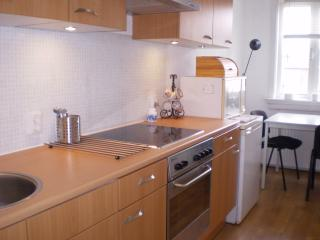 2 bedroom Condo with Internet Access in Rotterdam - Rotterdam vacation rentals