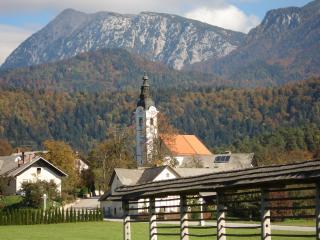 Ski and holiday apartment in slovenia - Begunje na Gorenjskem vacation rentals